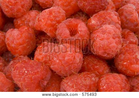 Close Up Raspberries