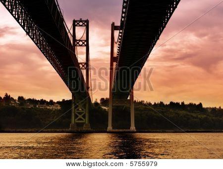 Under the Tacoma Narrows Bridge