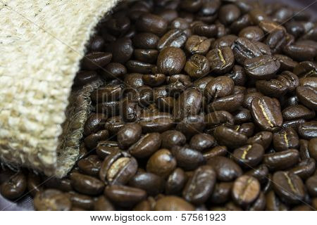 Coffee Beans Outside His Jute Bag Ii