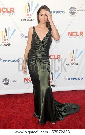 Talisa Soto at the 2009 ALMA Awards. Royce Hall UCLA, Westwood, CA. 09-17-09