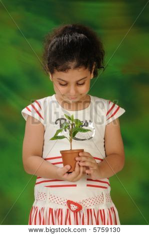 a young pretty girl looking after a young sapling
