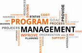 picture of status  - A word cloud of program management related items - JPG