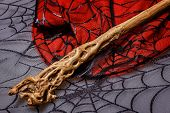 pic of warlock  - Wooden magic wand is on the web background for halloween - JPG