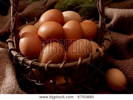 Do not put all your eggs in one basket