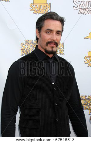 LOS ANGELES - JUN 26:  Victor Webster at the 40th Saturn Awards at the The Castaways on June 26, 2014 in Burbank, CA
