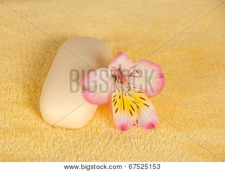 Piece of toilet soap and flower
