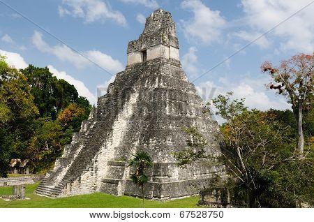 Tikal. Mayan Ruins In Guatemala