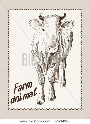 cow vector hand drawn