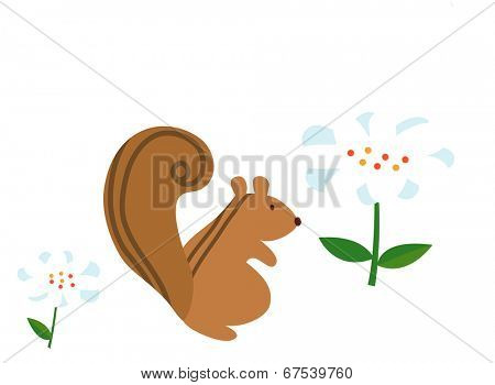 The view of squirrel with flower