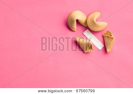 fortune cookies on pink background