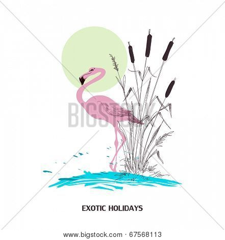 Exotic holidays poster, water, flamingo and cattail