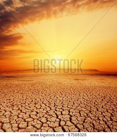 hot orange sunset over desert