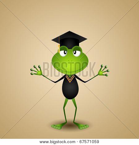 Frog Graduate