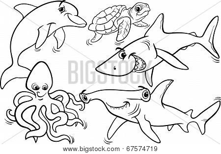 Sea Life Animals And Fish Coloring Page