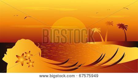 summer landscape imagery