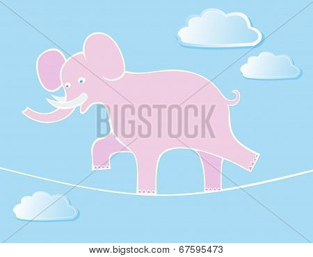 Elephant Walks By Tightrope