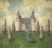 stock photo of surreal  - Fantasy surreal illustration in a dreamy place with a castle trees sky grass with a beautiful peacock male - JPG