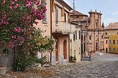 image of oleander  - view of the ancient italian town Longiano with oleander flowers and an antique church on background - JPG