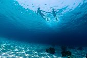 picture of under sea  - Underwater shot of the couple snorkeling on sea surface - JPG