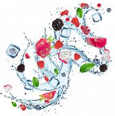 pic of dragon fruit  - Fresh fruit with water splash over white background - JPG