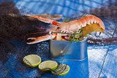 pic of crustaceans  - Presentation of a crustacean with mixed vegetables in box - JPG