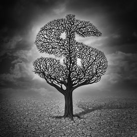 foto of drought  - Finance crisis and financial drought business concept as a dying tree with no leaves in a drought landscape as a symbol of a bad economy and investment despair in a stock market decline - JPG