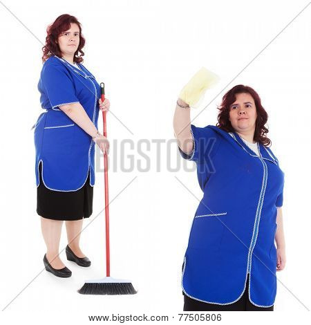 the image of cleaner with mop