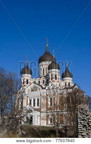 Aleksandr Nevsky Russian Orthodox Cathedral In Tallinn