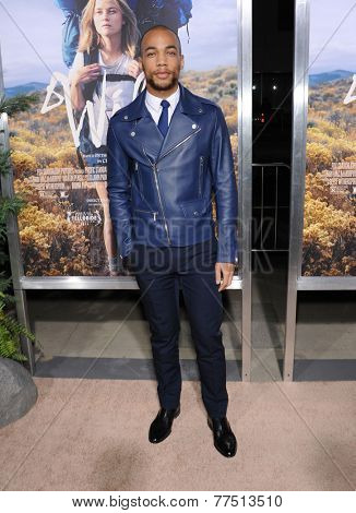 LOS ANGELES - NOV 19:  Kendrick Sampson arrives to the