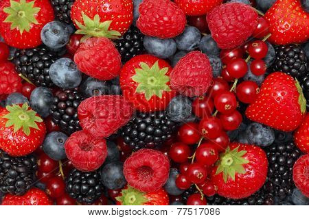 Different Berries. Background