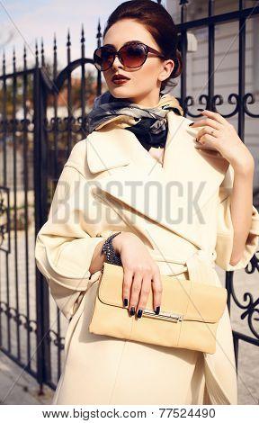 Beautiful Lady With Dark Hair Wearing Elegant Coat And Sunglasses