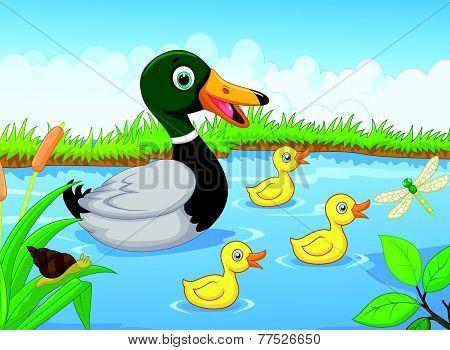 Cartoon duck