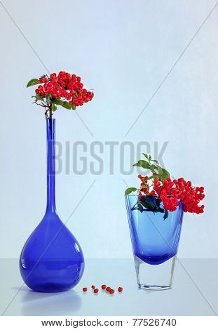Blue Vases and Red Berries