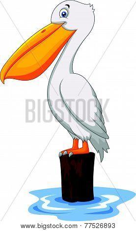 Vector Cartoon Pelican in the bay