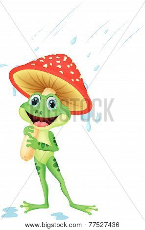 Vector Cute frog wearing rain gear under mushroom