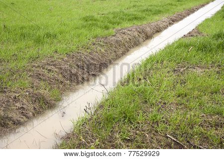 Ditch In A Field