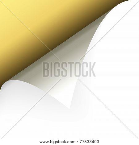 Paper Upper Left Corner
