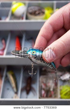Fisherman Choosing A Lure