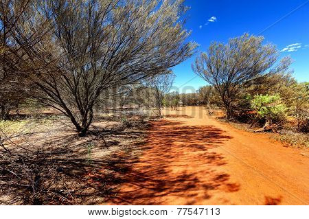 Small Country Road In Hot Australian Outback