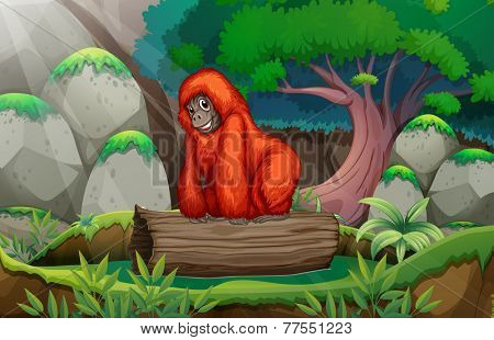 A gorilla above the log at the jungle