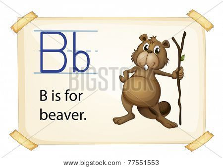 A letter B for beaver on a white background