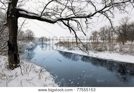 Winter scene with tree near river