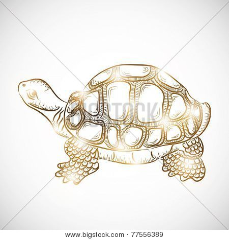 Chinese symbol of wealth tortoise in golden color on gradient background.