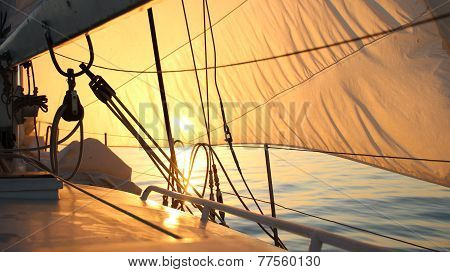 beautiful sun-filled sails at dawn