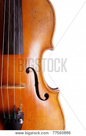 violin or fiddle detail