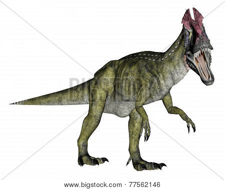 Cryolophosaurus dinosaur walking - 3D render