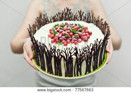 Chocolate cake with cream and cranberries on girl hands