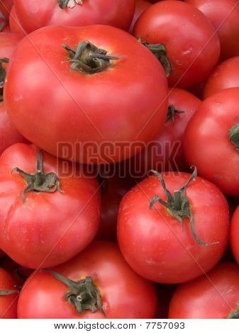 Vegetables   Tomatoes  Red
