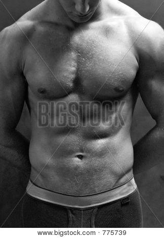 Model chest