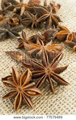 Star anise on burlap background